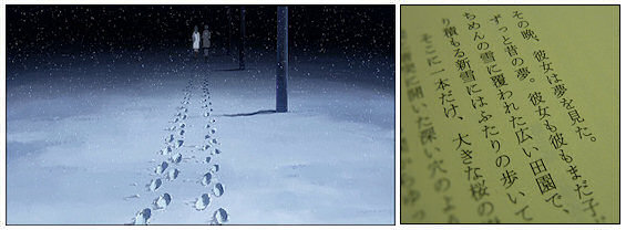 5 Centimeters per Second 1-1