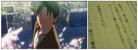 5 Centimetres per Second 8-2