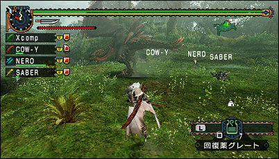 Monster Hunter Portable 2nd G Online