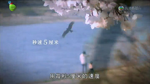 5 Centimetres per Second gets a reference.