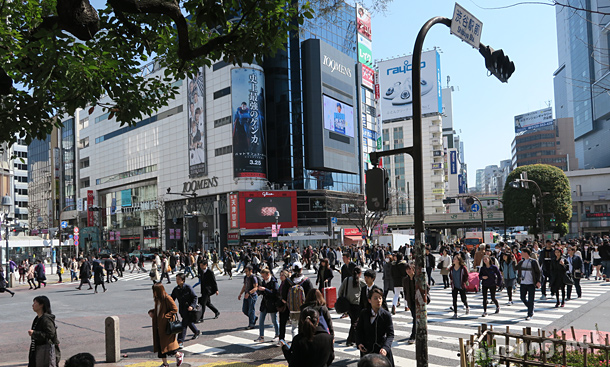 Shibuya crossing every morning