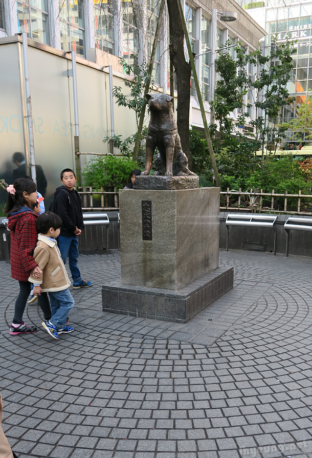 Shibuya Hachikou