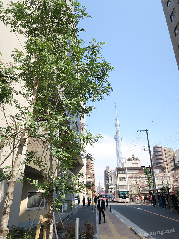Off to Tokyo Skytree!