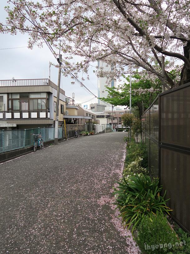 Sanguubashi area.