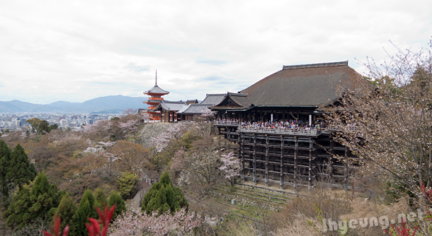 Amazing view of Kiyomizu Temple