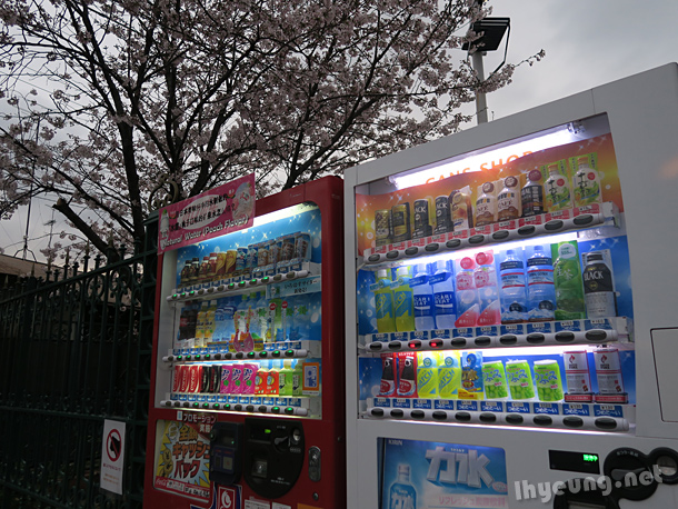 Vending machines under the cherry blossoms.