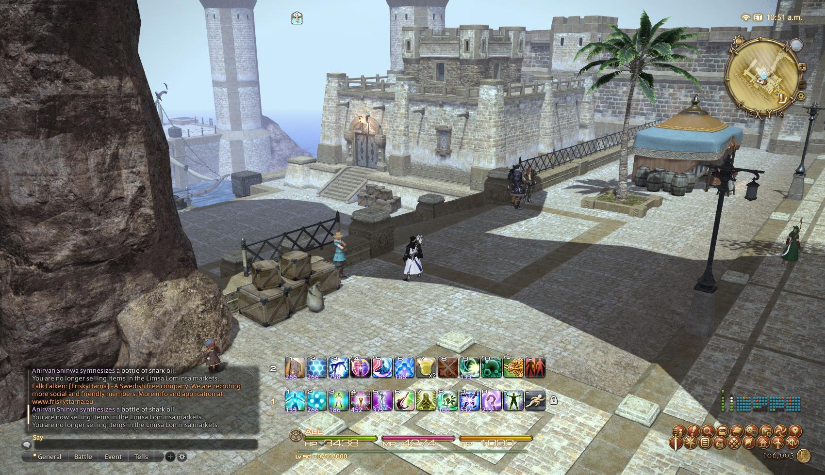 Final Fantasy XIV: A Realm Reborn Starter Guide & A Look